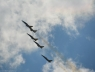 baltic-bees-lotwa-albatros39-na-airshow-2013-radom-4