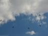 baltic-bees-lotwa-albatros39-na-airshow-2013-radom-8